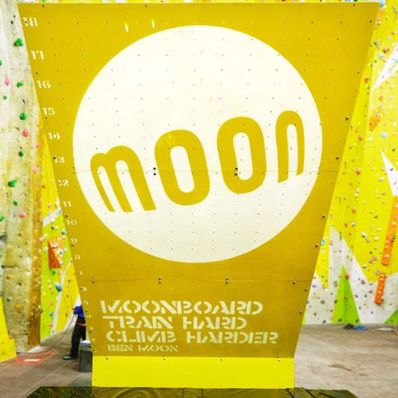 Favorit Moon Climbing Moon Board Panel Set Kletterwand Bausatz im VN41